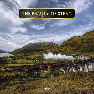 Beuty of Steam Danann Publishing